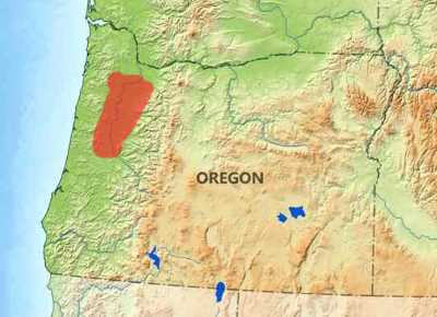 Willamette Valley - Oregon Region