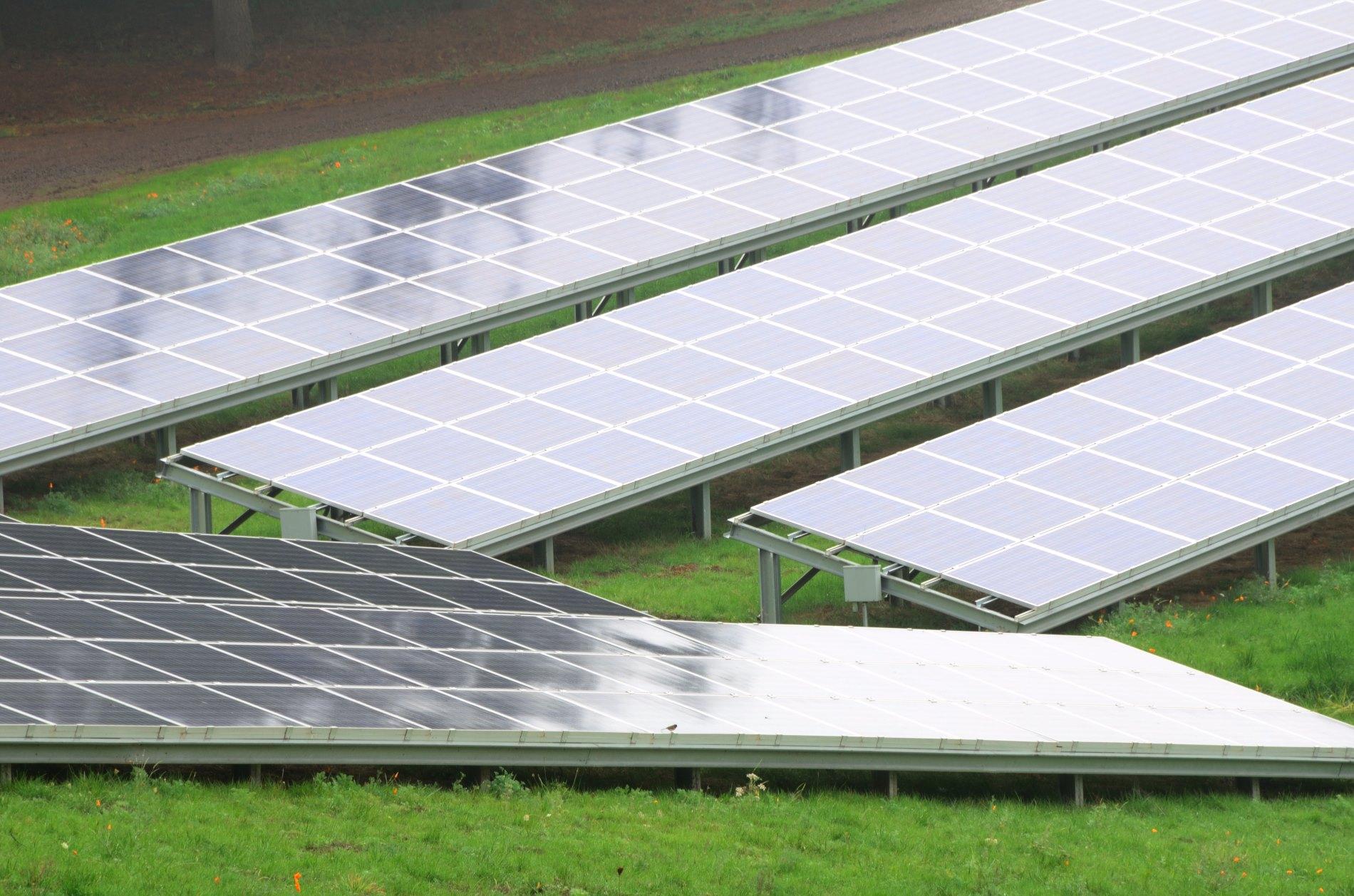 Solar array in the Willamette Valley near Portland Oregon